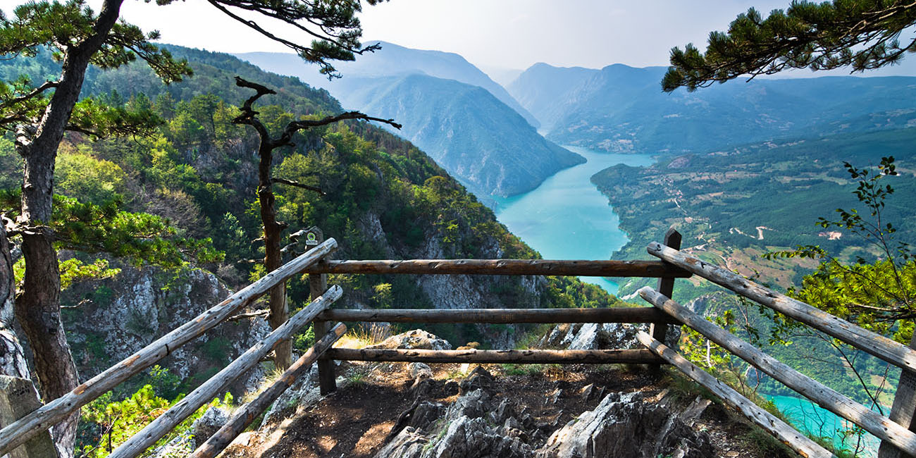 Banjska Stena Lookout at Tara National Park