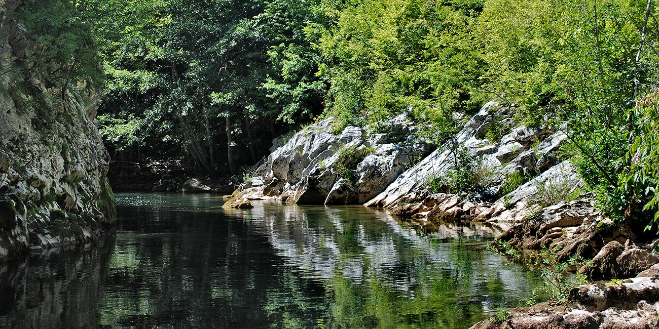 Rzav River