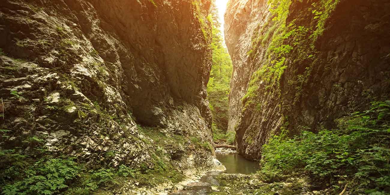 Kanjon Rače