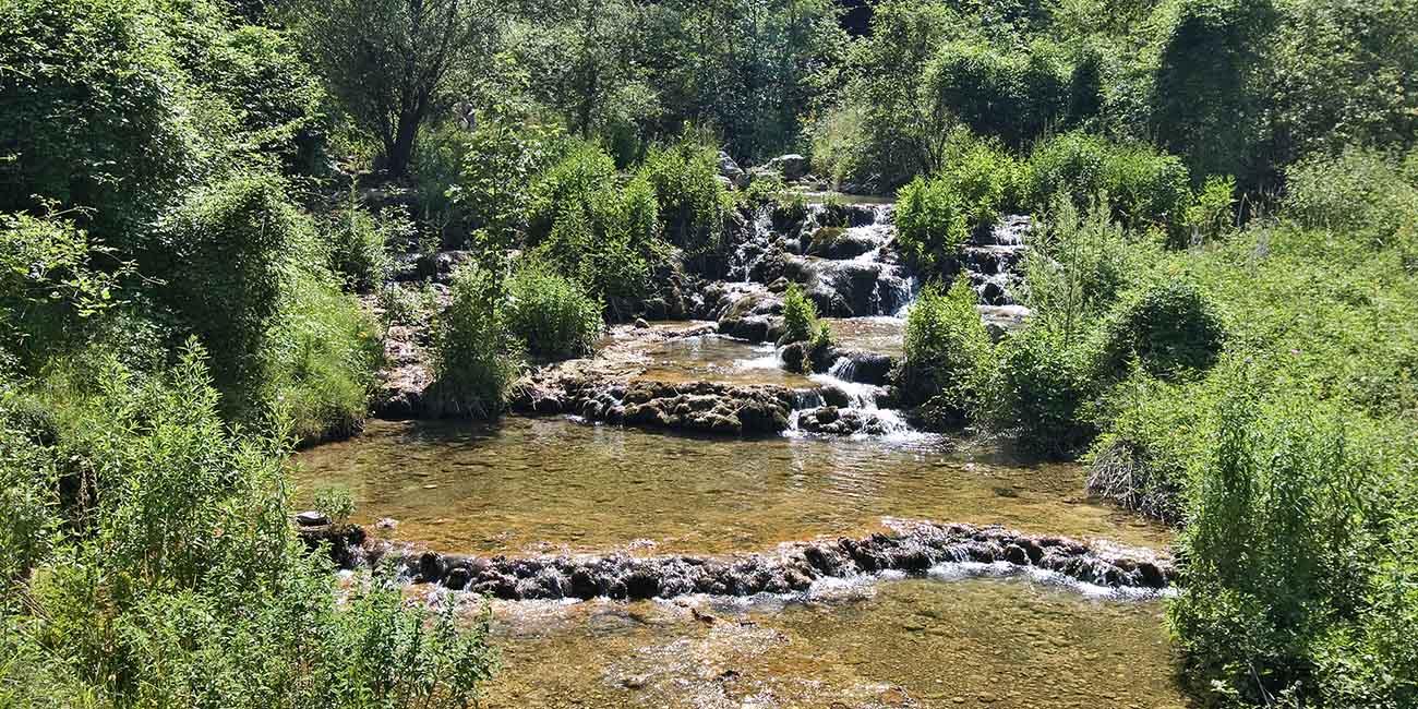 Slapovi kanjona panjice