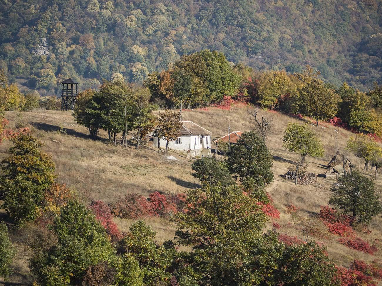 Boljetisko Brdo