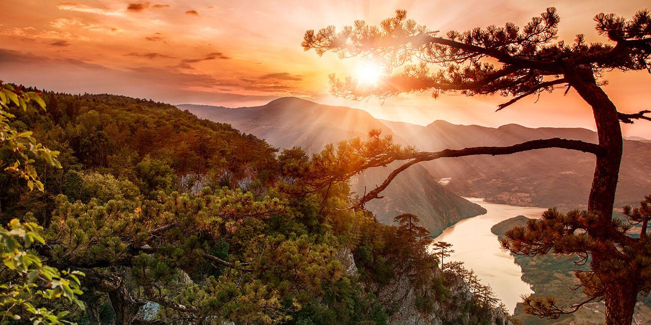 Banjska Stena Lookout at Tara National Park